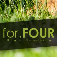 hundeschule rostock for four dogcoaching. Black Bedroom Furniture Sets. Home Design Ideas