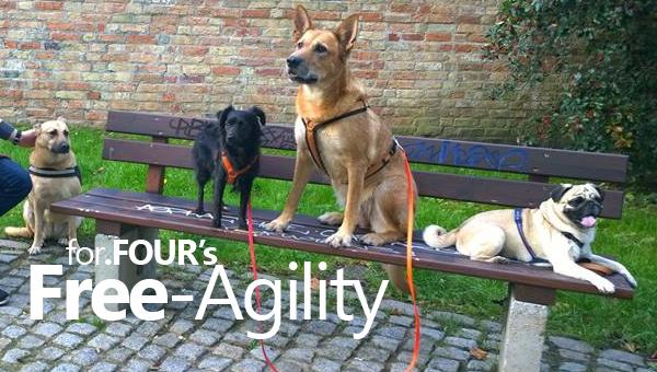 free-agility-rostock