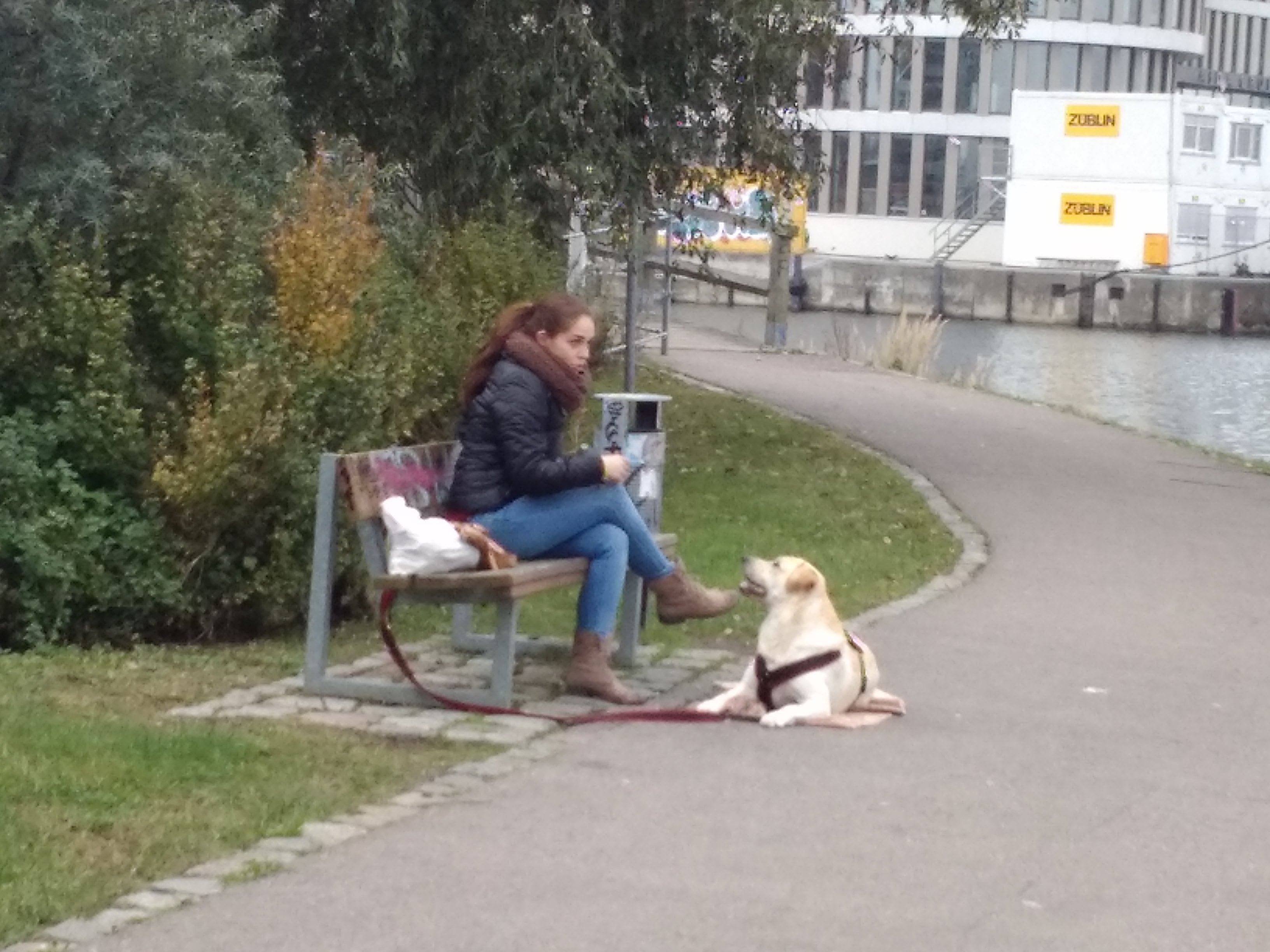 Hundeschule Rostock
